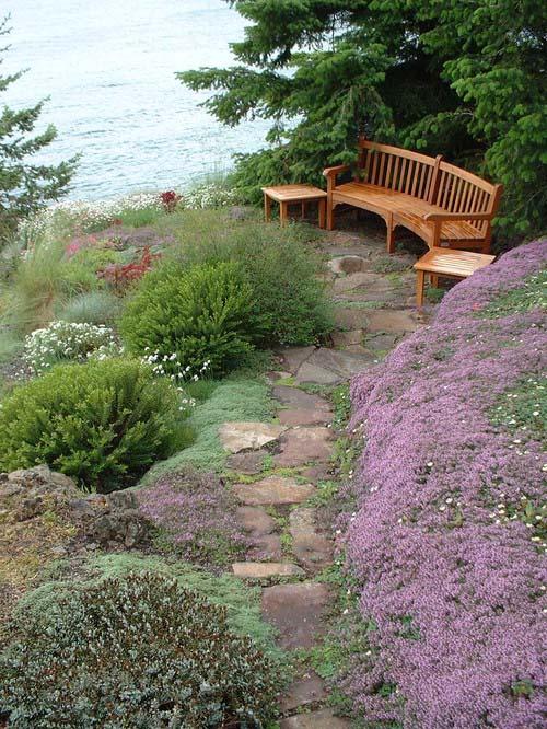 Сад на прибрежном склоне
