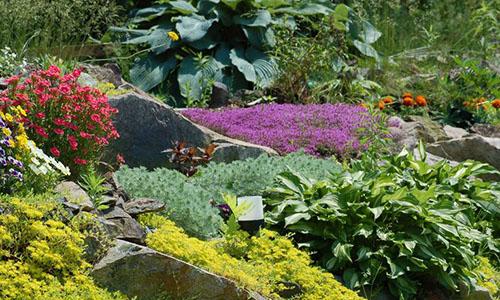 Английский альпийский сад