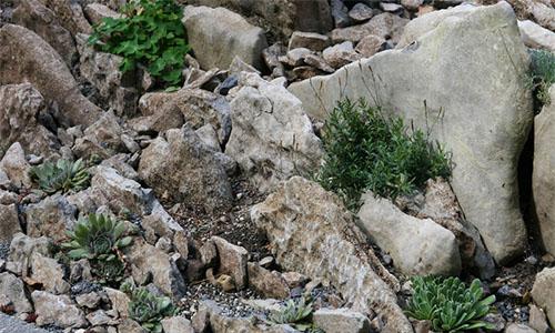 Пример скального размещения альпийцев