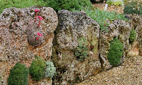 Каменистая стена