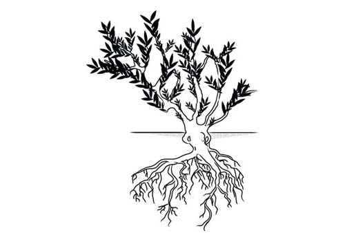 Полукустарники (Subshrub)